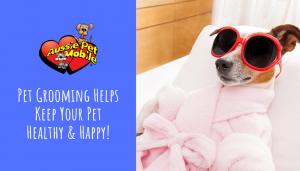 Pet Grooming Helps Keep Your Pet Healthy & Happy-Aug-2020